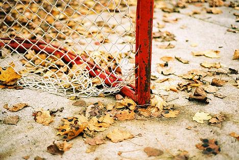 20061107_autumn03.jpg