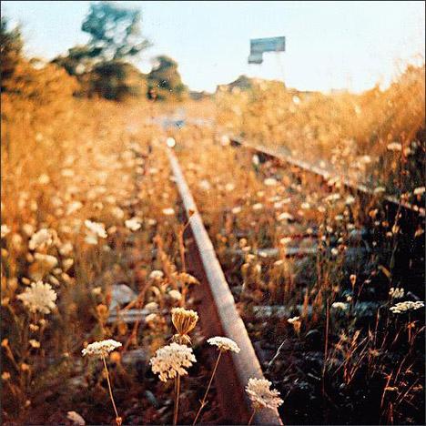 20061107_autumn05.jpg