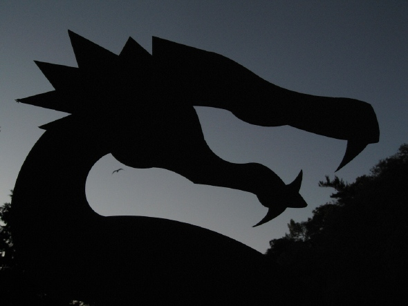 20070723_rfl-dragon.jpg