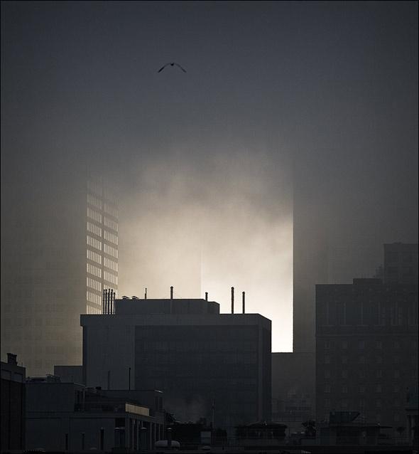 20071004_fog09.jpg