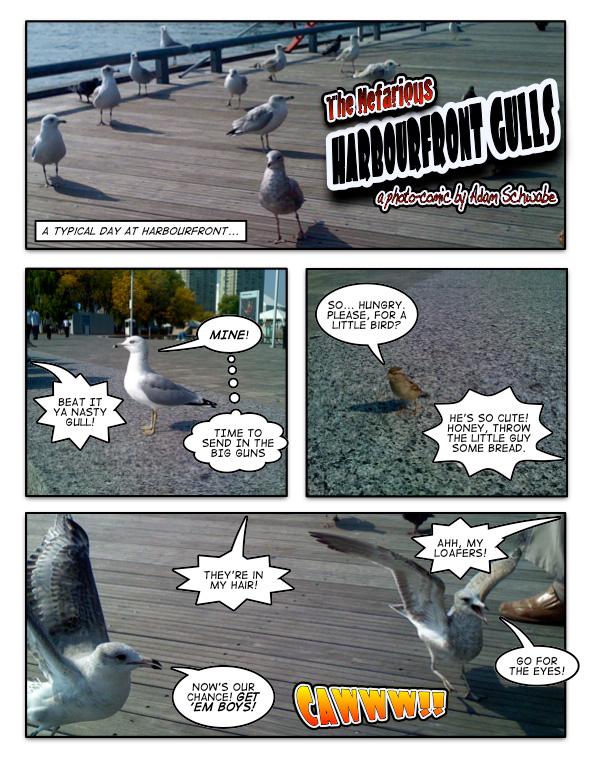 Nefarious Harboufront Gulls