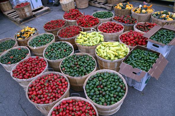 20071006_peppers2.jpg