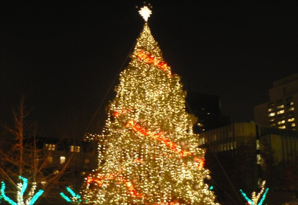City Hall Tree