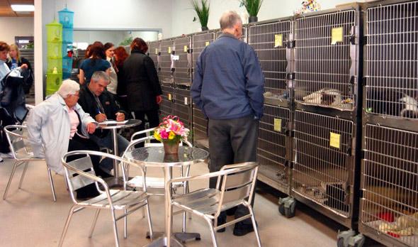 Toronto Humane Society's new Victoria Park branch