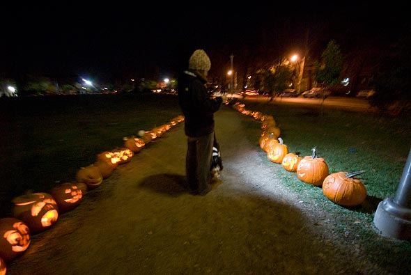 Sorauren Pumpkins