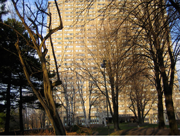 Thorncliffe apartment