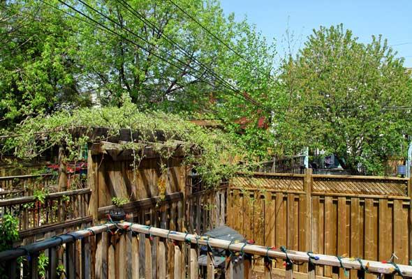 Backyard Junction home