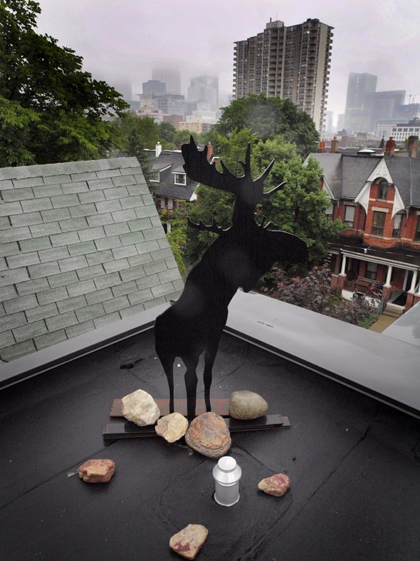 Rooftop view in Pachter House