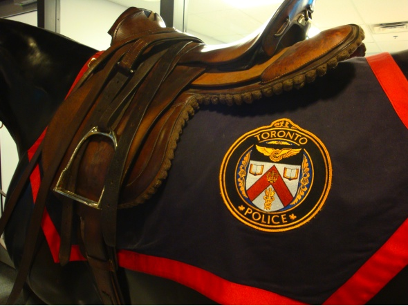 Toronto Police Mounted Division