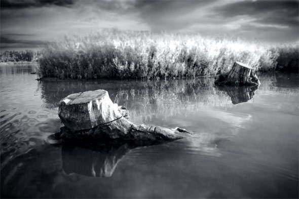 canoeing toronto lake ontario