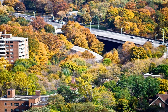 rooftopping autumn