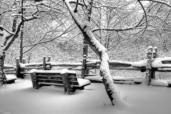 Toronto Snowstorm