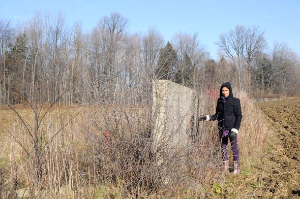 Richard Serra Shift