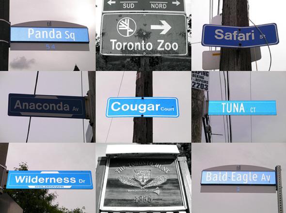 20101015-animalsigns.jpg