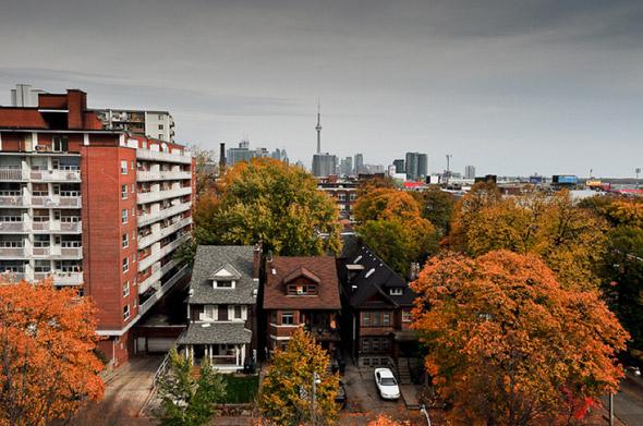 20101101-fall2.jpg