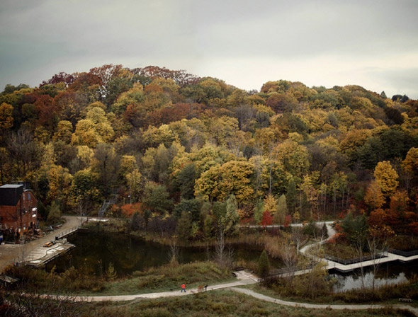 20101101-fall4.jpg