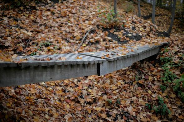20101101-fall6.jpg