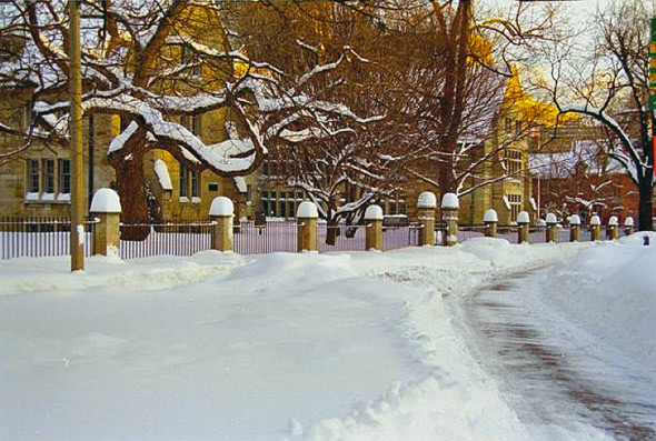 20101229-blizzard1999QPark2.jpg