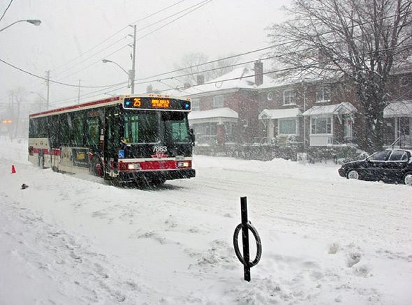 20110107-squeakyrat_snow.jpg