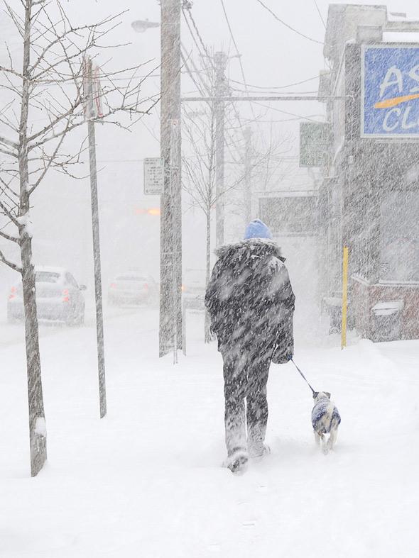 20110109-snow_bigdaddy.jpg