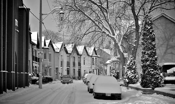 20110109-snow_bright_badger.jpg