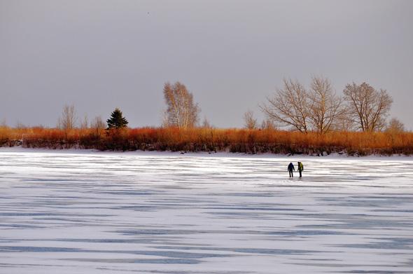 ice walking Toronto