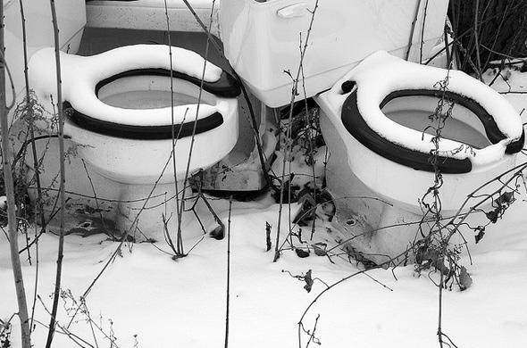 nature toilet toronto
