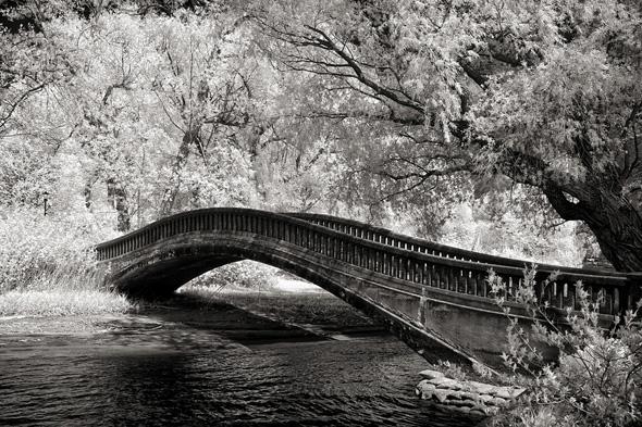 201124-island_bridge_syncros.jpg