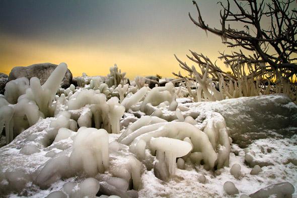 Ice formation Toronto