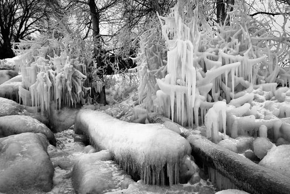 201129-icedaniel.jpg