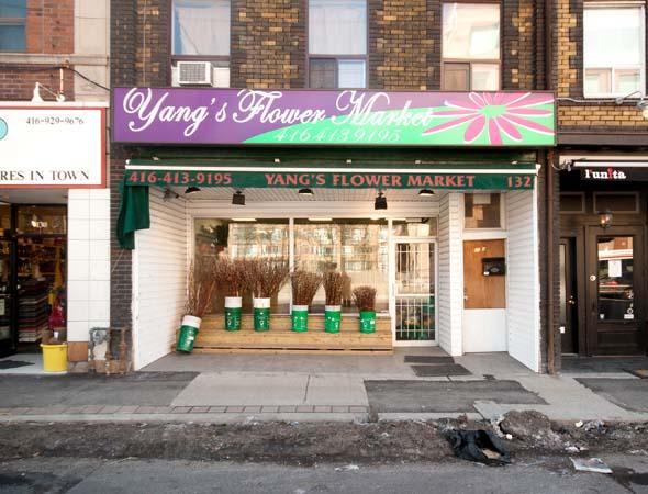 Flowers Avenue Davenport