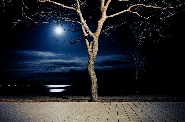 2011320-supermoon_boardwalk.jpg
