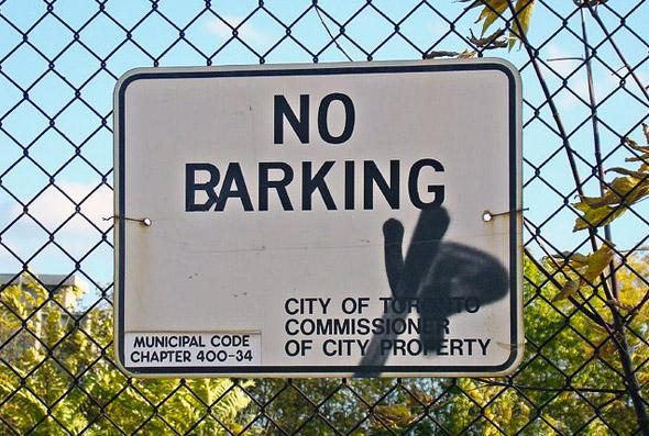 2011323-snider-barking.jpg
