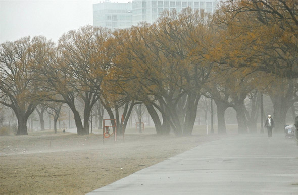 201147-fog-boardwalk.jpg