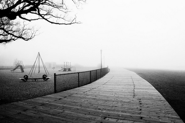 201147-fog-canned-muffins.jpg
