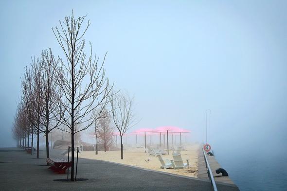 201148-fog-ferri.jpg