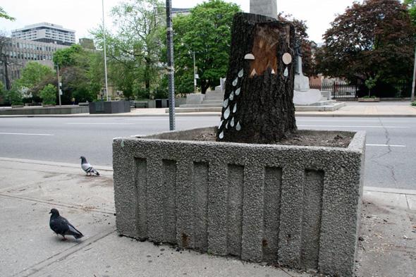 2011523-street-planter-stump.jpg