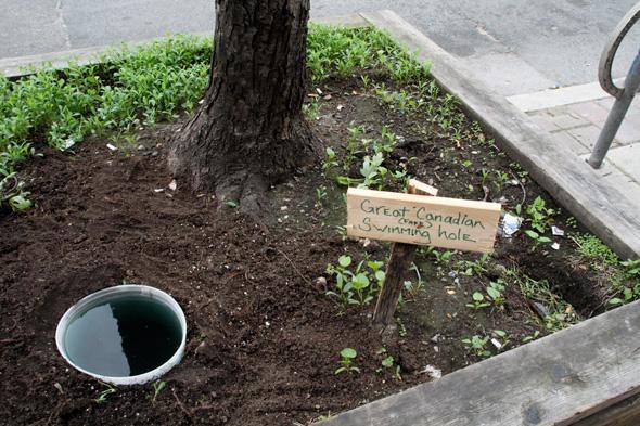 2011523-street-planter-water-hole.jpg