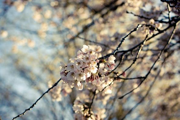 201159-_MG_7402.jpg