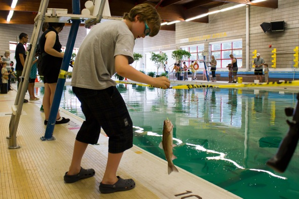 indoor fishing - Cool Indoor Pools With Fish