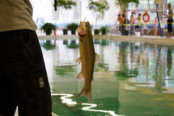 Indoor fishing