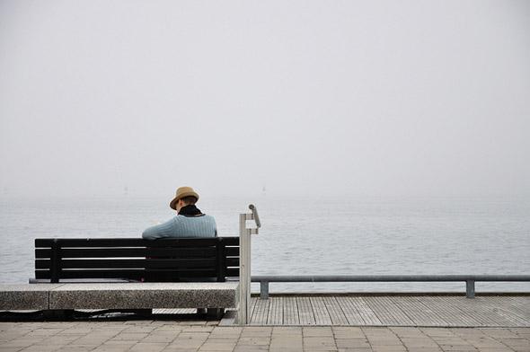 photo, harbourfront, lake