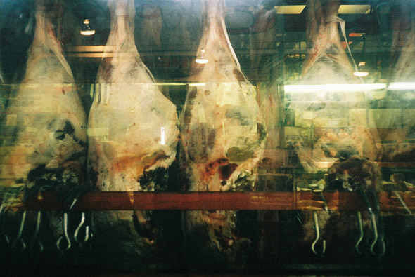 meat, beef, photo