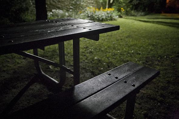 High Park picnic table toronto