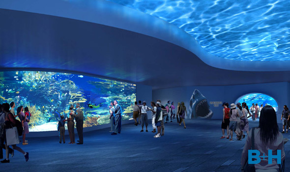 Ripley 39 s releases more details about toronto aquarium for Fish store baltimore