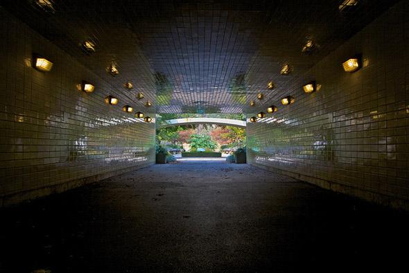 tunnel, bridal, path