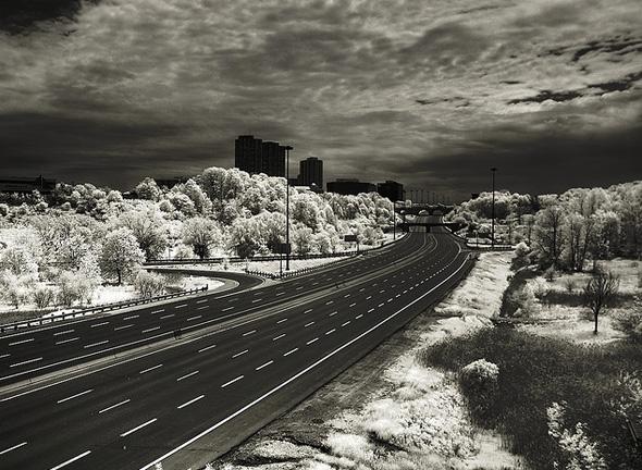 20111114-infrared-dvp-primate.jpg