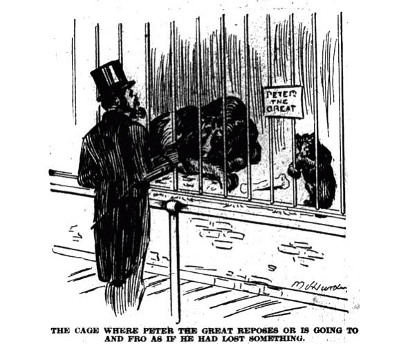 Toronto's First Zoo