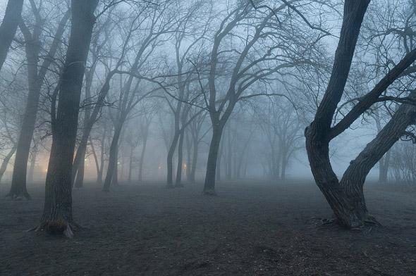 Cherry Beach Fog