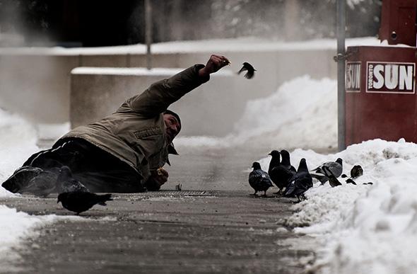 Man feeds bird